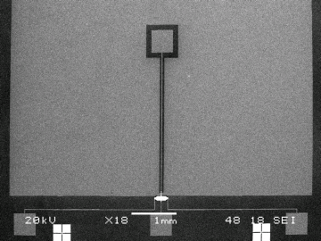 SEM image overview of a solid washer flux concentrator together with the Bi Hall sensor