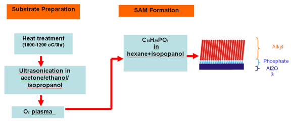 Typical procedure for SAM formation on substrate surface.