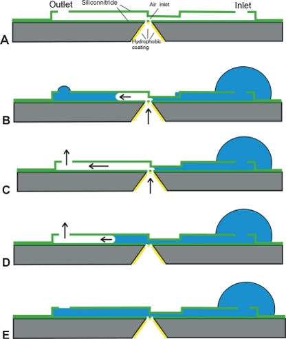 Figure 2: l ongitudinal cross section of a microchannel explaining the principle of operation of the bubble pump. (A) The microchannel includes a liquid inlet and outlet and a gas injector. The injector is located at the position where the channel height changes. (B) Injected gas will move toward the higher channel part, because there the capillary counter pressure is lowest. (C) Once the gas reaches the outlet it will flow out of the microchannel and a temporary gas flow is maintained. (D) When the gas pressure drops the microchannel will refill by capillary forces. (E) Fully filled.